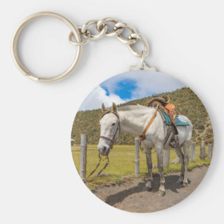 White Horse Tied Up at Cotopaxi National Park Keychain
