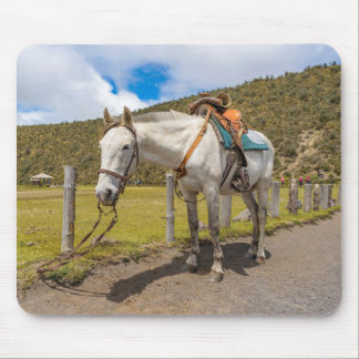 White Horse Tied Up at Cotopaxi National Park Mouse Pad