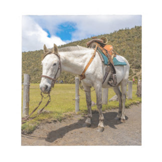 White Horse Tied Up at Cotopaxi National Park Notepad