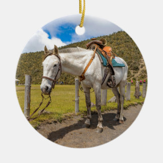 White Horse Tied Up at Cotopaxi National Park Round Ceramic Ornament