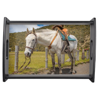 White Horse Tied Up at Cotopaxi National Park Serving Tray