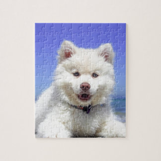 White Husky Puppy with Blue Eyes Jigsaw Puzzle