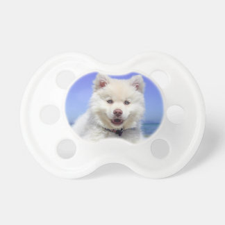 White Husky Puppy with Blue Eyes Pacifier
