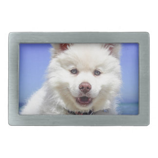 White Husky Puppy with Blue Eyes Rectangular Belt Buckle