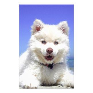 White Husky Puppy with Blue Eyes Stationery