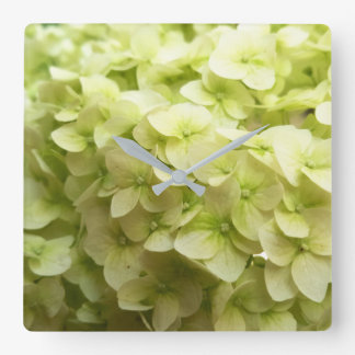 White Hydrangea flower background Square Wall Clock