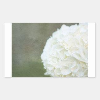 White Hydrangea Flower Floral Photograph Sticker