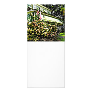 White Hydrangeas By Green Striped Awning Rack Card