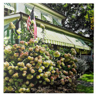 White Hydrangeas By Green Striped Awning Tile
