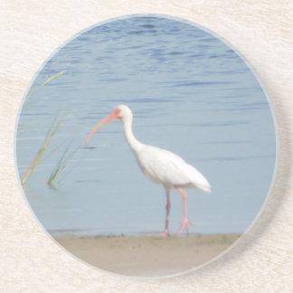 White Ibis Coaster