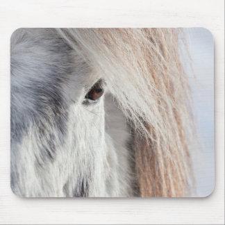 White Icelandic Horse face, Iceland Mouse Pad