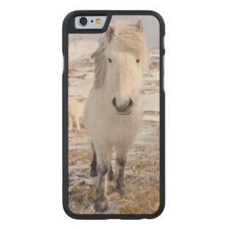 White Icelandic Horse, Iceland Carved® Maple iPhone 6 Slim Case