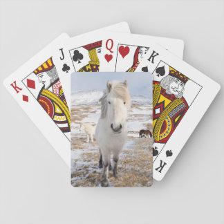 White Icelandic Horse, Iceland Playing Cards