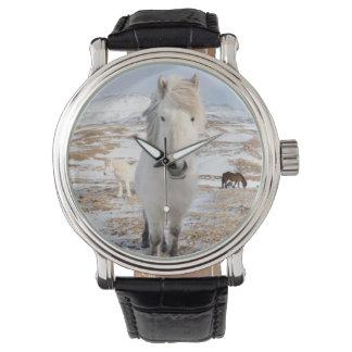 White Icelandic Horse, Iceland Wristwatch