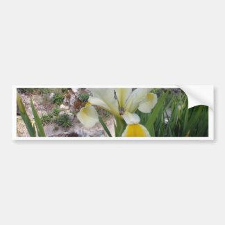 White Iris and Beetle Bumper Sticker