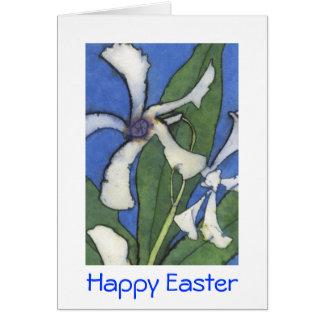 White Jasmine Easter Card