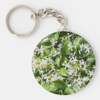 White Jasmine Flowers Basic Round Button Keychain