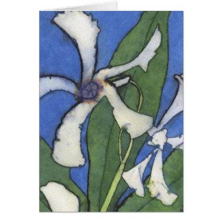 White Jasmine Notecard Note Card