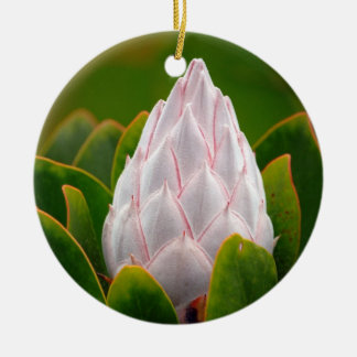 White King Protea Blossom, Christmas Ornament