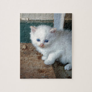White Kitten Jigsaw Puzzle