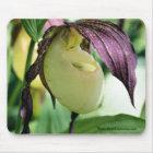 White Lady Slipper Flower Photo Mousepad