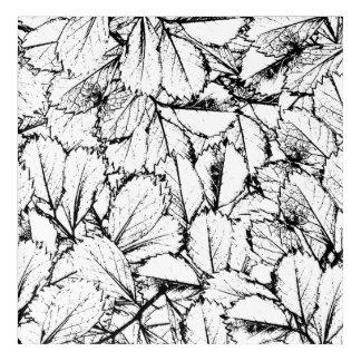 White Leaves Acrylic Wall Art
