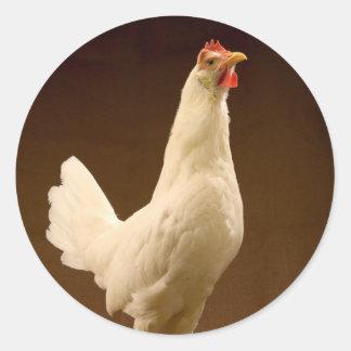 White Leghorn Hen Classic Round Sticker