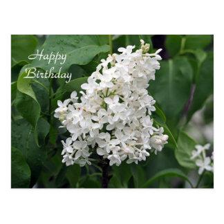 White Lilac Birthday Postcard