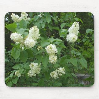 White Lilac Bush Mouse Pad