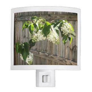 White Lilac Night Light