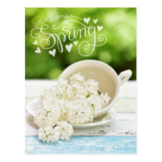 White Lilacs Spring flowers Stilllife Floral Text Postcard