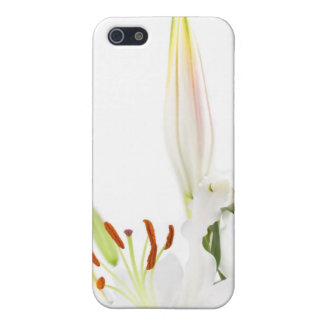White lilies iPhone 5/5S case