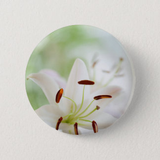 White Lily Flower Fully Open 2 Inch Round Button