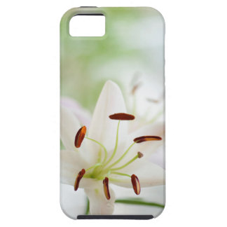 White Lily Flower Fully Open Case For The iPhone 5