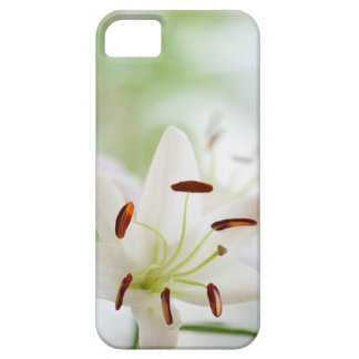 White Lily Flower Fully Open iPhone 5 Cover