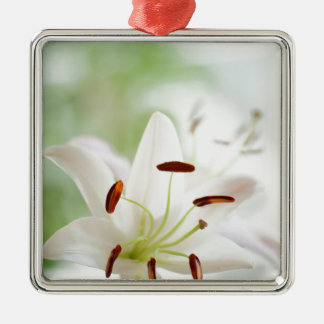 White Lily Flower Fully Open Silver-Colored Square Ornament