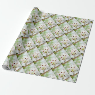White Lily Flower Fully Open Wrapping Paper