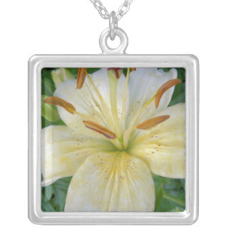 White Lily III Silver Plated Necklace