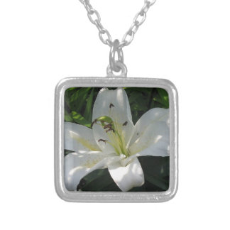 White Lily With Decorative Border Silver Plated Necklace