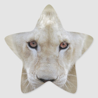 White Lion Spirit Warrior Africa Star Sticker