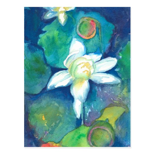 White Lotus Flowers Pods Postcard