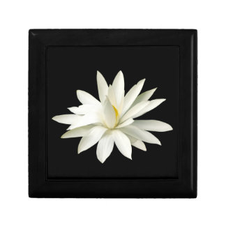 White lotus gift box