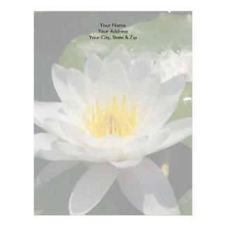 White Lotus Waterllly Flower Letterhead