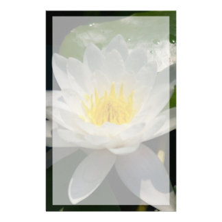 White Lotus Waterllly Flower Stationery