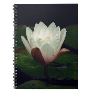 White Macro Lotus Flower Notebook