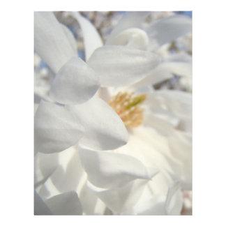 White Magnolia Flower Letterhead Designer Blue Sky