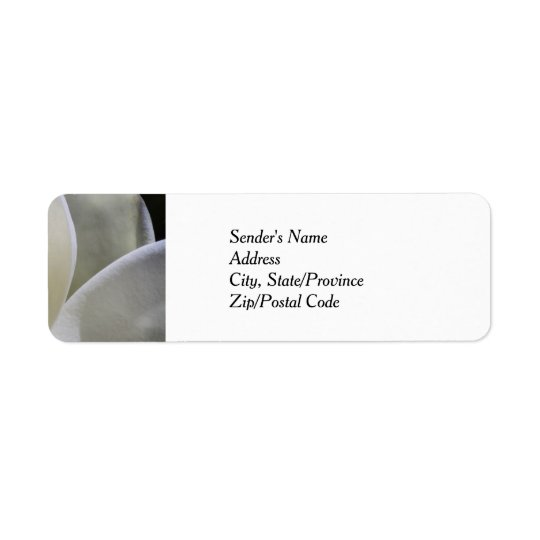 White Magnolia - Return Address Labels