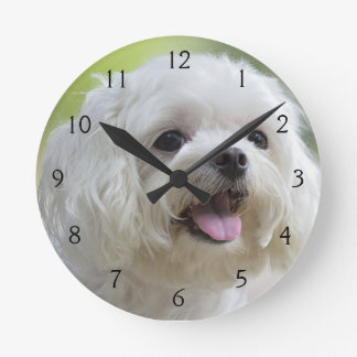 White Maltese Dog Round Clock