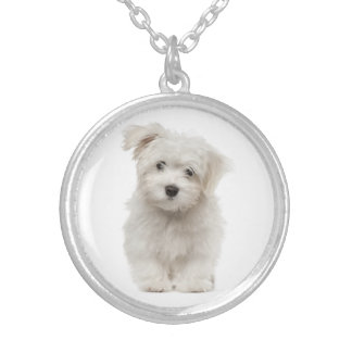 White Maltese Puppy Dog Love Silver Plated Necklace