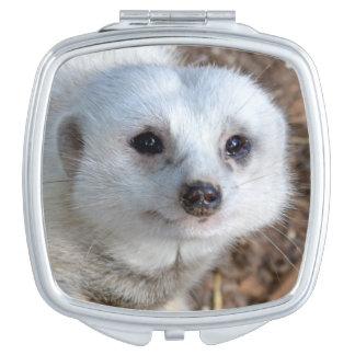 White_Meerkat_Closeup_Ladies_Square_Compact_Mirror Compact Mirrors